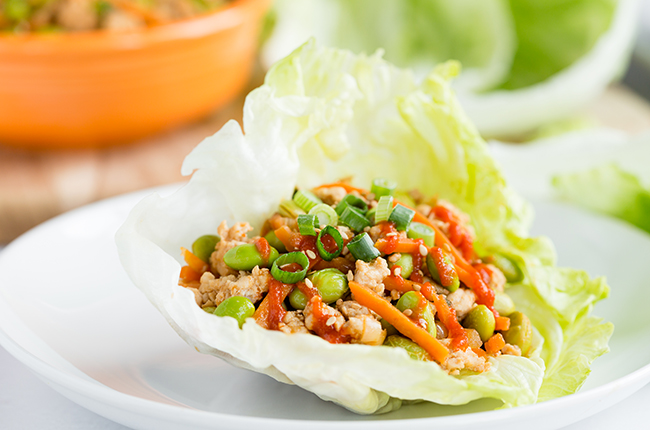 picture of asian turkey lettuce wraps